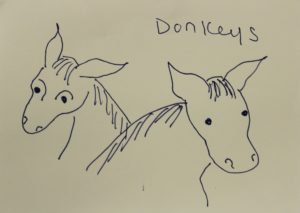 Donkeys by Christine Barry