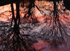 Reflection. by Amanda Riley