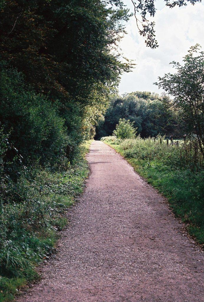 15277 || 3109 || Gravel Path ||  || 5780