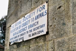 RSPCA Old Sign by In The Garden of the Cathedral