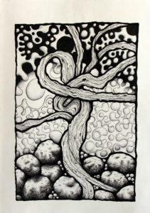 Tangled Stump by Davina Ware