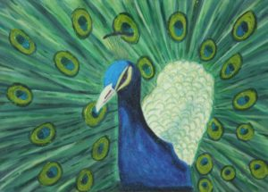 King Peacock by Debby Springall