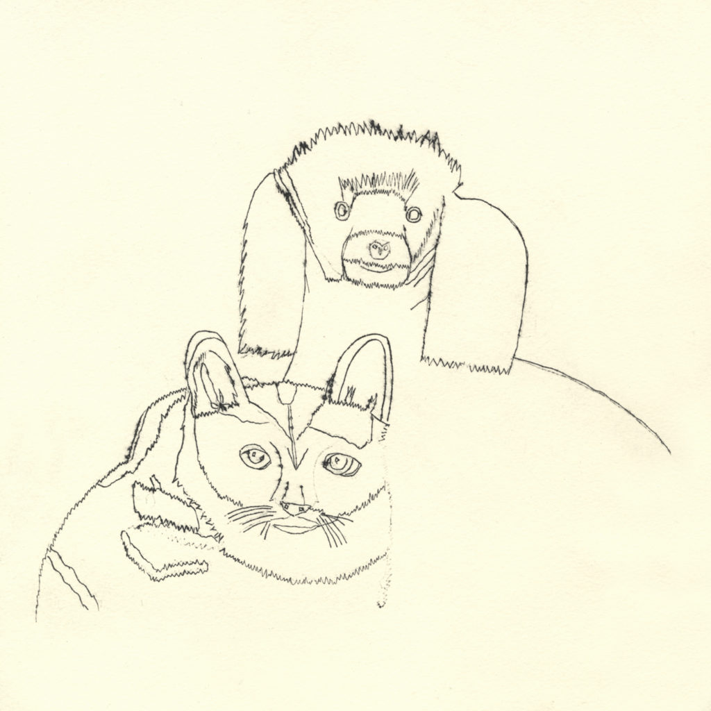 10537 || 2366 || Dog and Cat || If you intend to put this work up for sale || NULL