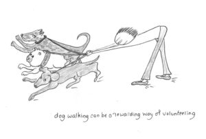 Volunteering for Dog Walking by Wendy Bailey