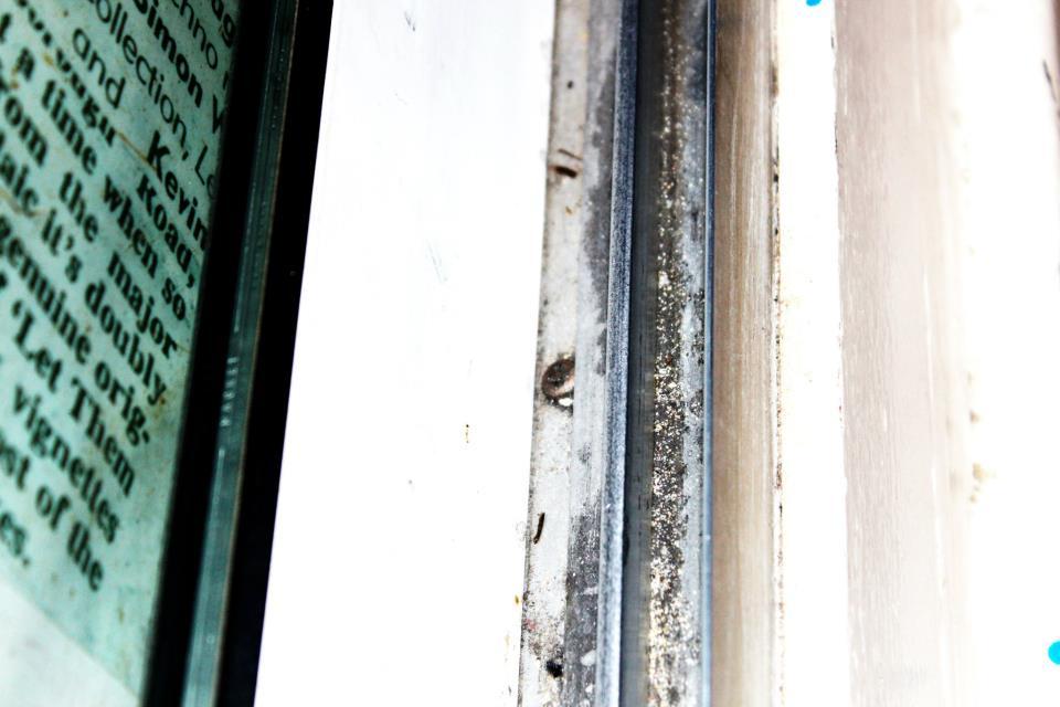 8859 || 2425 || My Dirty Secret:Dusty window runners ||  || 4752