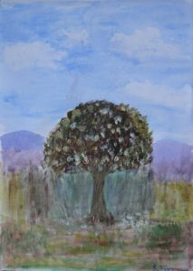 tree in blossom by Sylvia Scarsbrook
