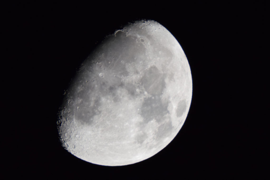 44853 || 1834 || moonies || NULL || 3790
