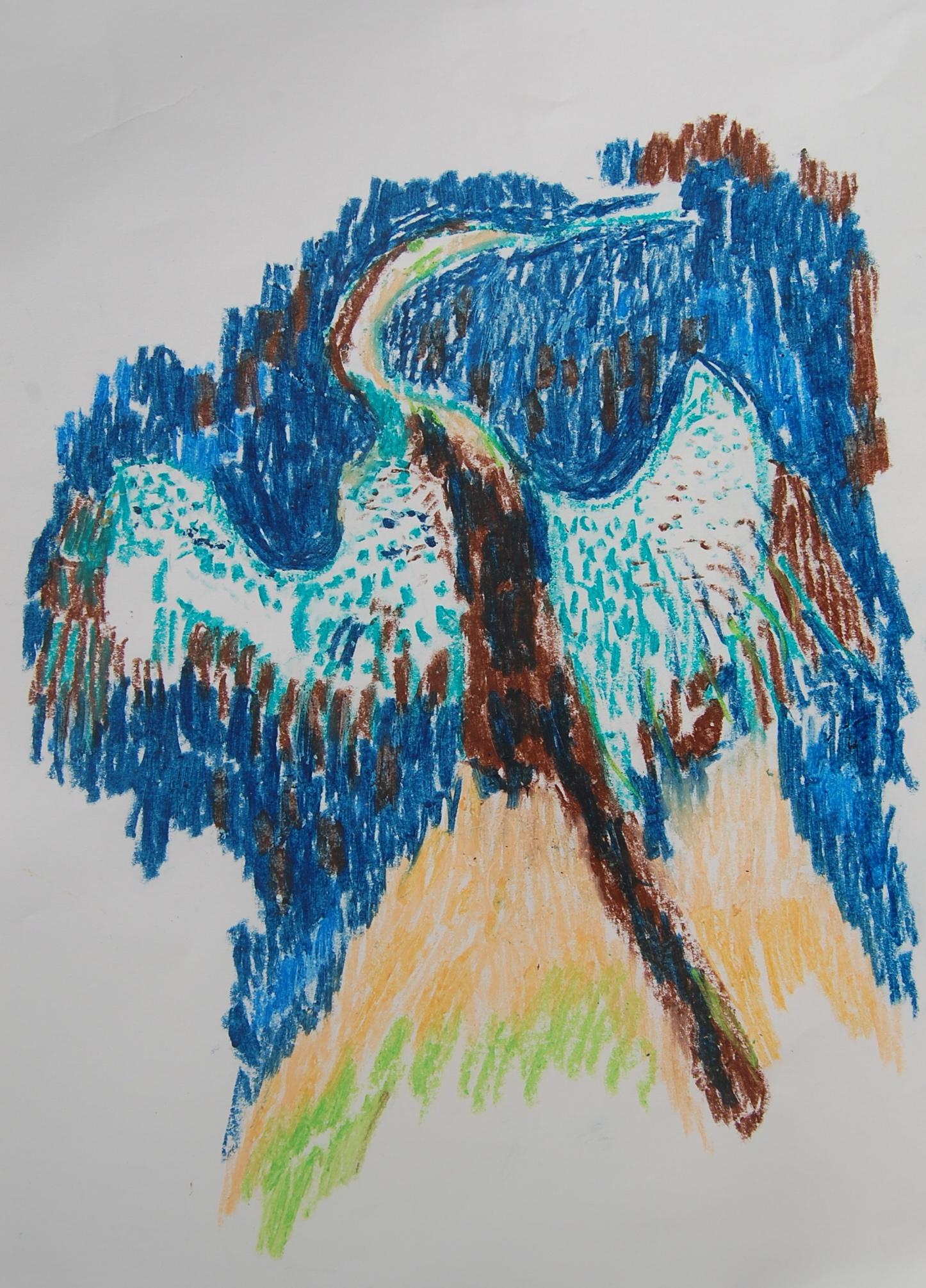 6893 || 2123 || Bird ||  || NULL