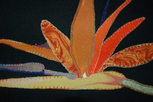 Bird of Paradise flower (Detail) by Jenny Lancaster