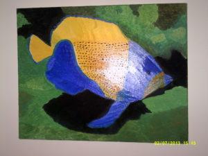 blue girdled angelfish by richardsheils