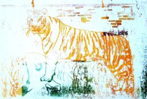Tiger by Ali Samvati