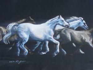 Wild Stallions by Martin T