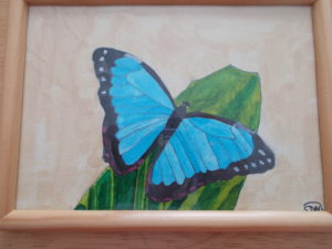 Beautiful butterfly on leaf by sophie mayes
