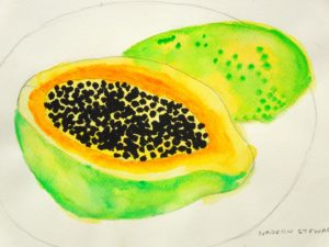 Papaya by Nadean Stewart