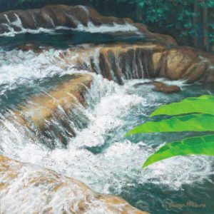 Dunns River Falls by Susan McClure