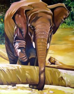 Elephant by john anderson