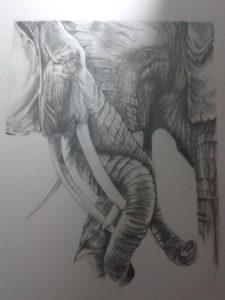 The Elephants by Steve Pinchess