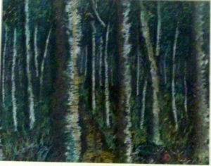 enchanted_wood by John57