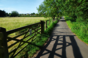 A country path by LouiseTopp