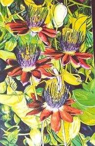 flowers_003 by Keith Dyett