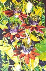 Flowers by Keith Dyett