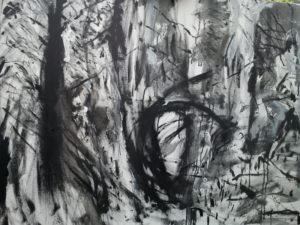 Forest by Emma Dunphy