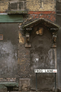 Frog Lane by Steven Edgar