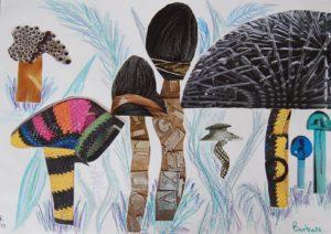 Fun Fungi by Barbara Reeve