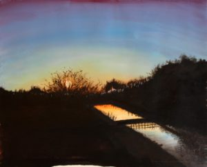Somerset Levels by Geoff Stow