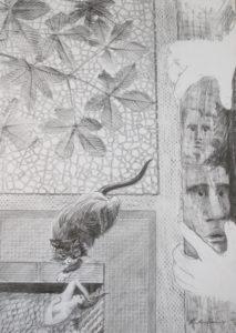 The Awakening by Heather Beveridge