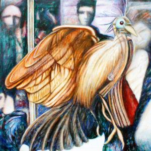 Hoatzin (Opisthocomus hoazin) by John Henry Thomas