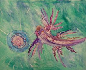 Sea Slug attacking a Jellyfish by Howard Luke