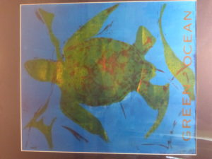 Loggerhead Turtle by Mike West