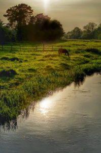 Lonley water by LouiseTopp
