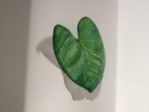 Leaf by Nicola Foley