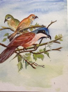 Birds Collective by KatWal