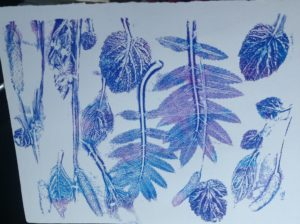 Botanical print 4 by Carole Bennett