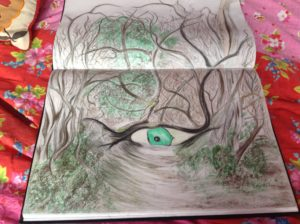 The eye of the forest by Rachel scott