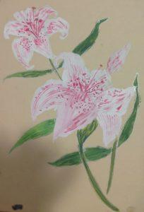 Lilies by Julia Clark