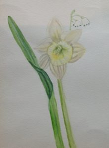 Spring flower by Samantha Gamage