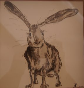 March hare by Pamela