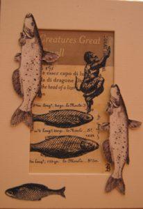 Fish by Pamela