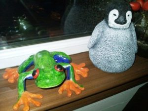 Baby penguin and tree frog by Nicola Foley