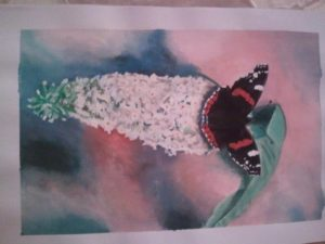 Butterfly resting by Nicola Foley