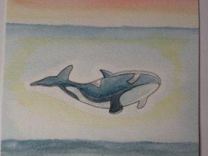 Orca by Nicola Foley