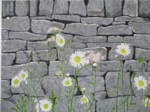 Dry Stone Wall with Daisies. by Rose sketch