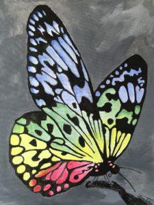 Multi coloured butterfly by Lenny Jordan Blinding Art