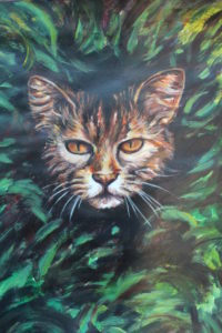 Cat's eyes by Andrew Saggers