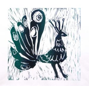 Peacock by Rachel Summers