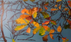Autumn Leaves by Ivy and Boards